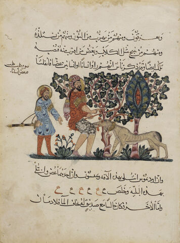 File:Abbasid Caliphate, Outdoor Scene of A Mad Dog Biting a Man, Arabic Translation of the Materia Medica, 1224 AD.jpg