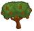 Stone pine chart