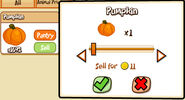 IP Pumpkin sell harvest 2011