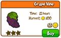 Grape vine shop