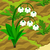 Lily of the Valley 70