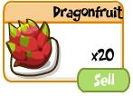 Dragonfruitstorage
