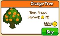 Orange tree shop