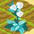 Marshmallow plant 70