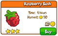 Raspberry bush shop