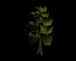 Tree leafy