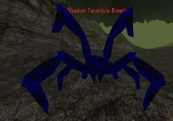Shadow Tarantula Breeder