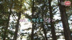 PK-YE-Ep.03