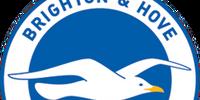 Brighton & Hove Albion (2014-15 home)