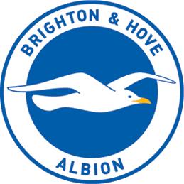 File:Brighton & Hove Albion.png