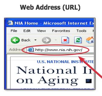 File:Web address.png