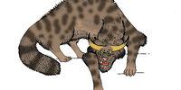 Horned Demon Cat