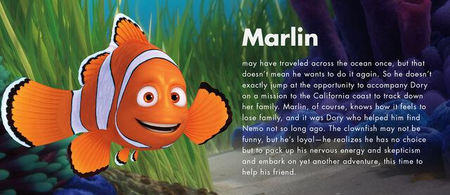 File:Marlin information.jpg