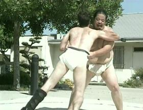 Sumo wrestling 1