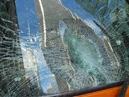 Bus-windshield-cheetahchristina