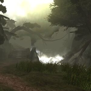 GreatSouthernForest2