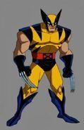 TNP4 AV50 Wolverine TURN