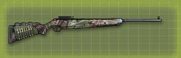 Hunting rifle r pic