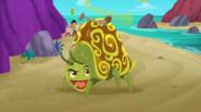 Stinkbug-Pirate Rock!