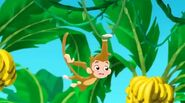 Monkey-Captain Hook's Parrot02