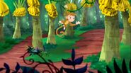 Monkey-Captain Hook's Parrot01