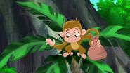 Monkey-Pirate-Sitting Pirates02