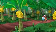 Have-a-Banana Grove02