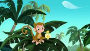 Monkey-Invisible Jake02