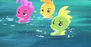 Seahorse-The Seahorse Roundup15