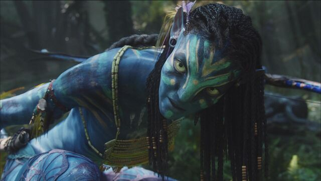 File:Neytiri watching Quaritch die.jpg
