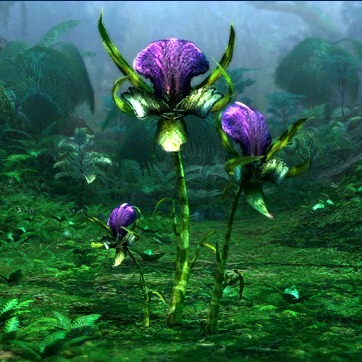File:Flora gallery userbox.jpg