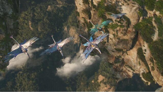 File:Flying.jpg