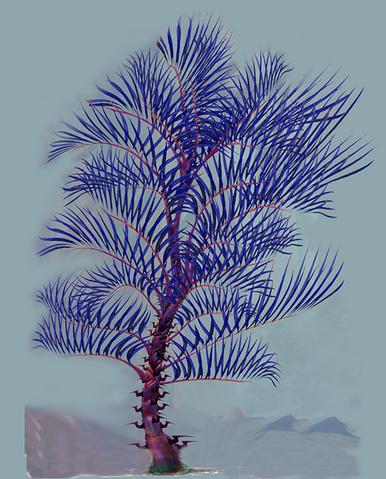 File:Razor Palm.png
