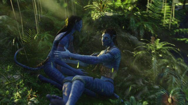 File:Avatar br 1547 20100520 2033430986.jpg