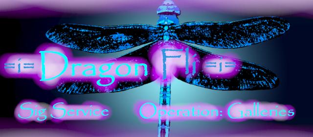 File:Dragonfli Banner.png