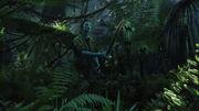 Alone in the jungle