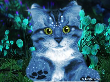 File:Cat Na'vitized Alt Background.png