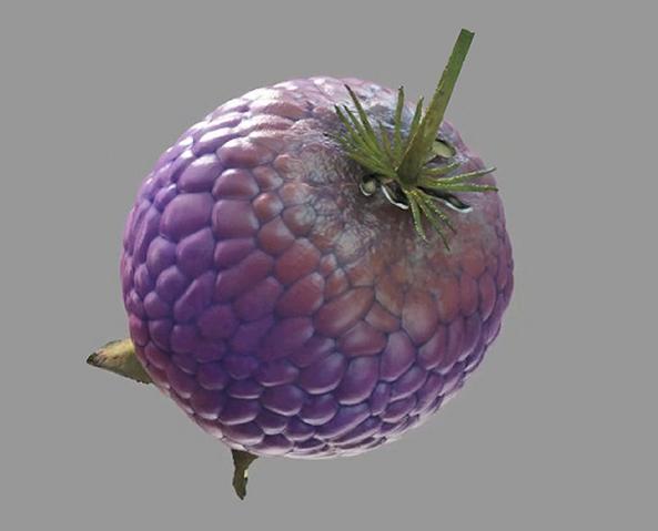 File:Yovo-Fruit.png