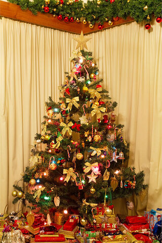 File:Christmas Tree NS.jpg