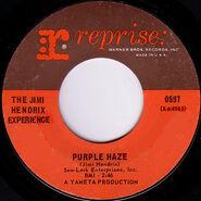 Purplehazeus