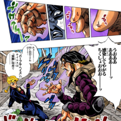Illuso infected by the hand