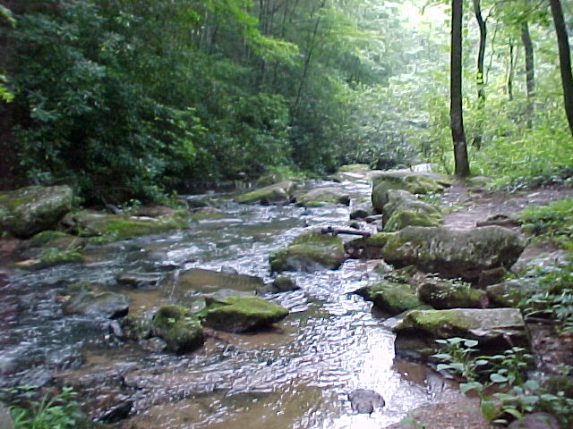 File:The creek.png