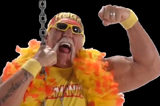 Hulk Hogan Wrecking Ball