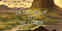 In the Realm of the Condor