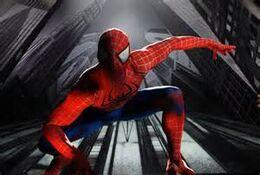 Spider-Man(Earth-11714)