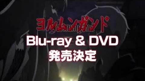 Blu-ray & DVD CM 1