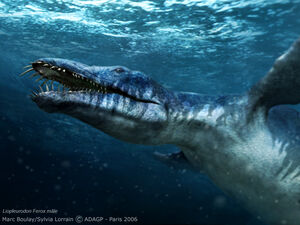 Liopleurodon t99