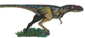 A-rex