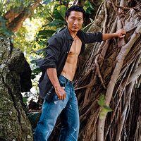 Kim tree