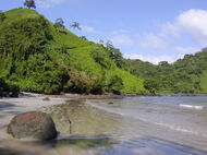 Isla del Coco-chatham beach